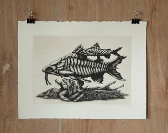 Plated Longbeard - Silkscreen Print - Scientific Study