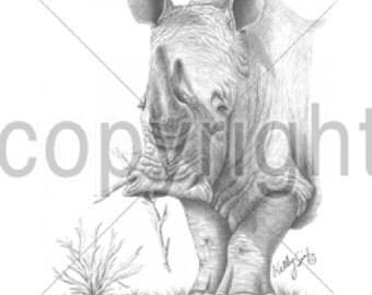 Rhinoceros T SHIRT, Rhinoceros Portrait T SHIRT, Rhinoceros Sweatshirt, Rhinoceros Quilt Fabric Block, Rhinoceros Tote Bag Item #269g