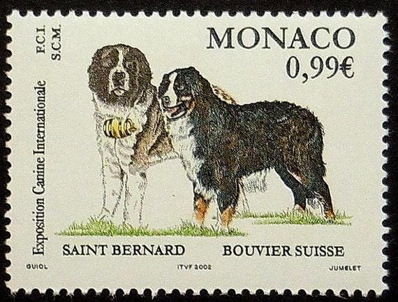 Saint Bernard Dog Bouvier Suisse Monaco Handmade Framed