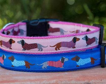 Dachshund Print Dog Collar  -Australian Made