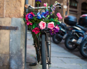 Photo Canvas, The Blooming Bike
