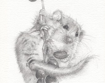 Field Mouse Drawing - Mounted print of original pencil drawing