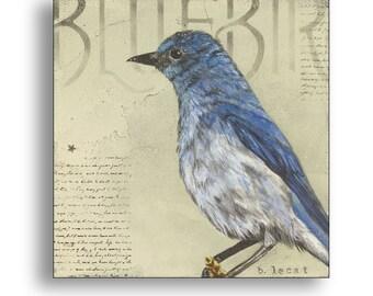 Bluebird Print, Blue Bird Art, Blue and Cream Square Wall Art, Modern Farmhouse Decor, Framed Art Print, Bird Illustration, Bluebird Artwork