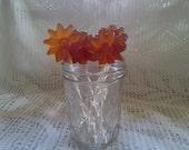 Maple Lollipops / 100 percent pure Vermont Maple Syrup/pkg of 8