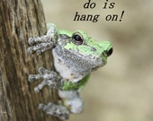 Poster Hang On Frog Poster 11.25x17, 18x24, 24x36 Sometimes All You Can Do is Hang On