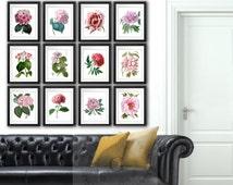 "Pink Peonies Flower Print Pink Hydrangea Print Botanical Art Print set of 12 Wall Decor 8x10"" Pink Wall Decor Gift for Her Girls Room Decor"