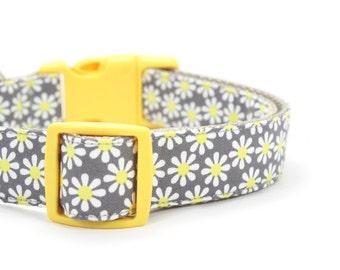 Yellow Daisy Dog Collar Girly Grey Floral Dog Collar