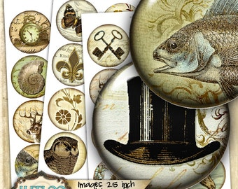 Digital printable sheet VINTAGE images 2.5 inch circle sheets for magnets pendants charms bottlecup pins craft - instant download - tn472