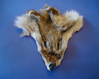 Coyote Face Fur