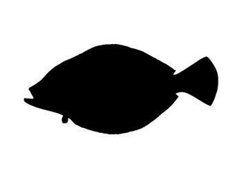 Image result for flounder silhouette