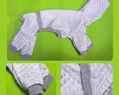 Italian Greyhound quilted jumpsuit / onsie + free snood!