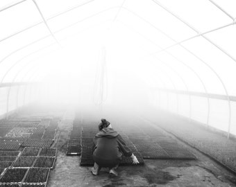 Greenhouse Morning
