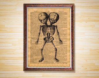 Medical dictionary page Anatomy print Two-Headed Skeleton poster