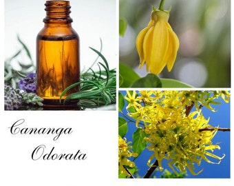 Ylang Ylang Essential Oil, Ylang Ylang Oil, Ylang Ylang Essential Oil 2nd, -- 100% Pure Authentic Ylang Ylang EO