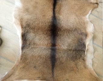 Handmade leather rug from african goat pelt