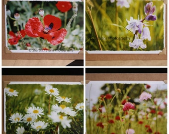 Photo note cards, set of 4 flowers handmade cards, greeting cards, photographic cards, photo prints, 7 x 5 photo stationery, blank cards