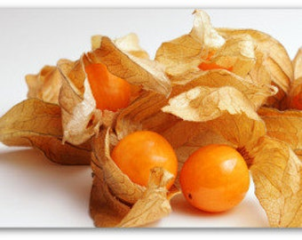 Ground Cherry Heirloom Seeds, Vegetable Seeds, Naturally Grown in the Pacific NW