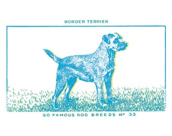Dog Print - Border Terrior (turquoise and lime, small)