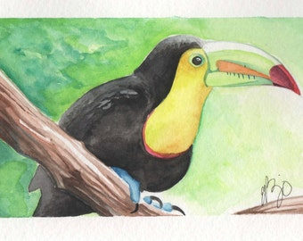 Tucan Samuel| 4x6 Original Watercolor