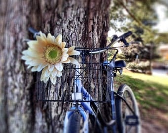 Small Cream Bicycle Basket Daisy Accessory