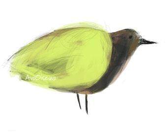 Oiseau jaune, brun, rouille, dessin numérique original, impression de qualité, type giclée. Cadre non-inclus.
