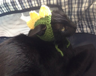 Dinosaur cat dog hat