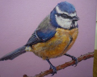 Limited edition print of blue tit, from bird painting