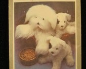 Dog Toy Pattern, Paper pattern for Sheepdog and Puppy
