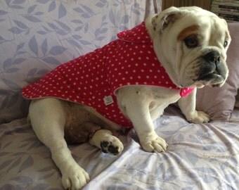 Bulldog Coat