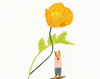 Print 'Cat and Canadian poppy'