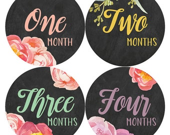 Chalkboard Floral Monthly Baby Stickers, Watercolor Floral Stickers, Baby Girl Milestone Stickers, Monthly Bodysuit Stickers, Petite Folio