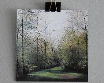 Noble Wood - Fine Art card - Trees - Woodland