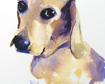 Fleagle; a dog portrait in watercolor