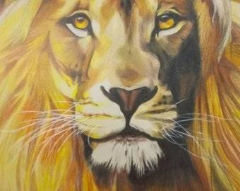 Custom - Lion Portrait