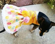 Dog Dresses Harness Dress Yellow and Pink with balloons  Birthday Girl Tiny YorkieChihuahuaPoodle Pug