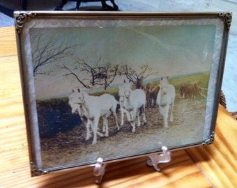 Vintage country scene with horses color print