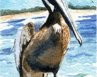 Original Pelican Art  Beach Painting  Art in Miniature Watercolor