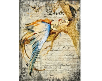 Vintage Woman Bluebird Feathers Queen Crown Printable  Decoupage Paper  Instant Download Digital Graphics Commercial Use