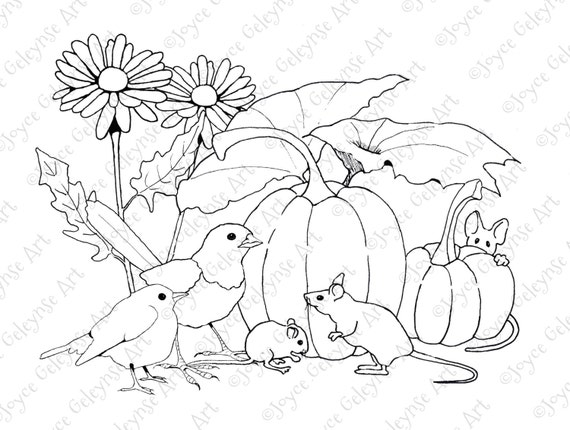 Coloring for Adults Pumpkins Mice and Birds Flowers Hand