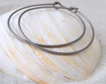 Pure Titanium - Hypoallergenic - Hoop Earrings for Sensitive Ears - Nickel - Pure Titanium Earrings - Three Sizes Available - Silver Hoops
