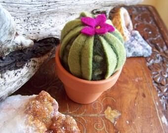 Needle Felted Cactus-round style