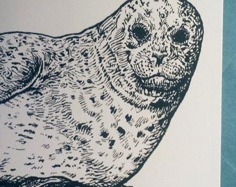 Harbor Seal Card Letterpress printed Orignial Illustration Grey Blue