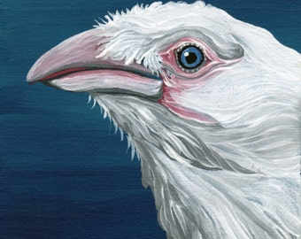 OOAK Original Canvas Magnet White Crow Raven Bird Wildlife Art-Carla Smale