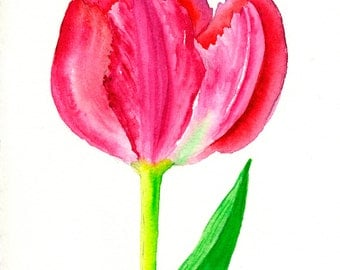 Red Tulip One Art Fine Art Print Original Watercolor Floral Print  Red Pink Green FRAMEABLE ART Giclee Wedding Mother's Day Gift Collectable