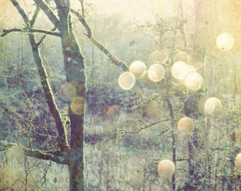 Woodland photograph sage green gold olive decor nature tree wall art golden sun flare sparkly bokeh - Into the Mystic