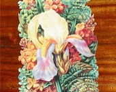 New Victorian Paper Scrap Iris with Ferns Flowers Floral