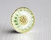 Light Peridot/Gold 18mm Czech Glass Button