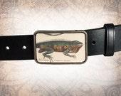 Belt Buckle, Leather Insert Belt Buckle, Buckle - Iguana
