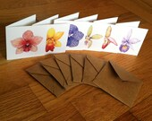 Small square enclosure cards - orchids