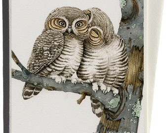 Owl Smooch Greeting Card by Tracy Lizotte